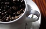 Kako napraviti savršenu kavu?