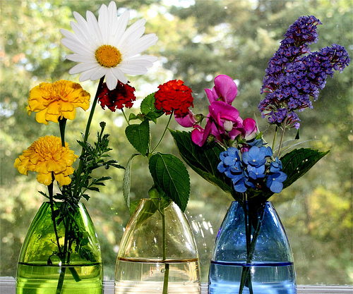 kako-cistiti-vaze