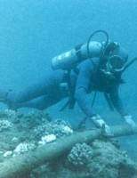 Kako je postavljen telefonski kabel preko oceana?