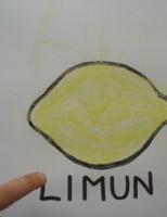 Kako nacrtati limun koristeći poklopce jogurta?