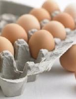 Kako iskoristiti kartone od jaja?
