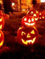 Kako izrezbariti bundevu za noć vještica ?