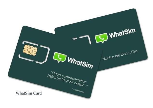 WhatSim