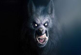 Nešto ih proždire u mraku: objavljen horor roman 'Zemlja vukova'