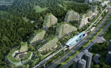 """Kina gradi cijeli jedan samodostatni """"šumski"""" grad"""
