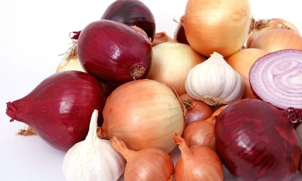 Prehrana izravno utječe na imunološki sustav