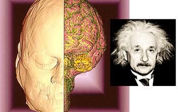 Einsteinov mozak