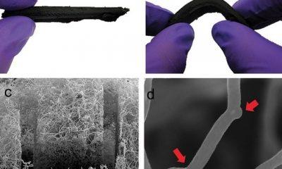 Spužva od ugljikovih nano cjevčica