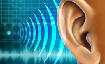 obnova-sluha