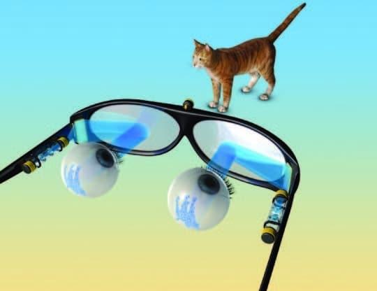 Ilustracija šematskog dizajna za naočale s holografskom protezom. (Credit: Roman Kanevsky, Inna Gefen & Shy Shoham)