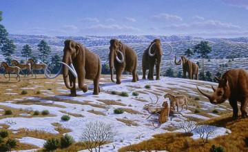 izumrle-zivotinje2