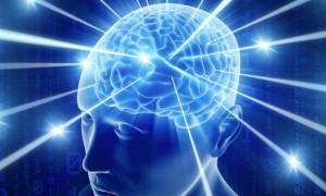 dnk-mozak
