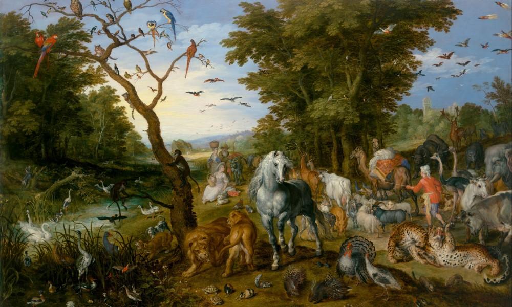 Jesu li životinje pametnije od ljudi?
