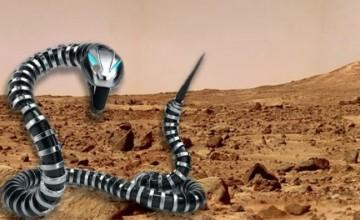 robotske-zmije