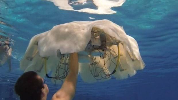 robot-meduza