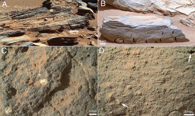 Kamenja koja je Curiosity pronašao na Marsu. (Credit NASA)