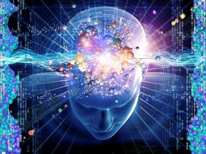 inteligencija