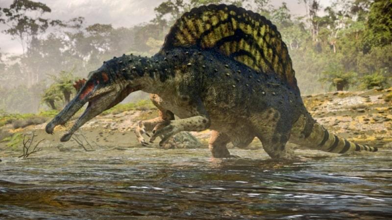 Najveći od svih - Spinosaur (Credit: rorytait.net)