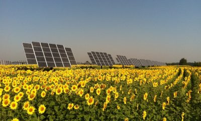 solarna-farma-convergence-energy