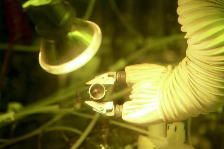 Proces proizvodnje plutonija-238 (FOTO: ORNL)