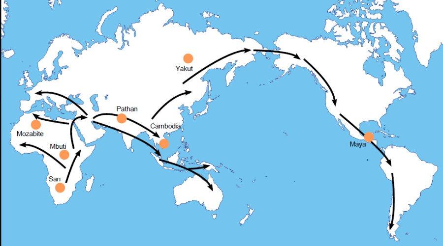 Smjer migracija Homo Sapiensa (FOTO: Swiss Institute of Bioinformatics)