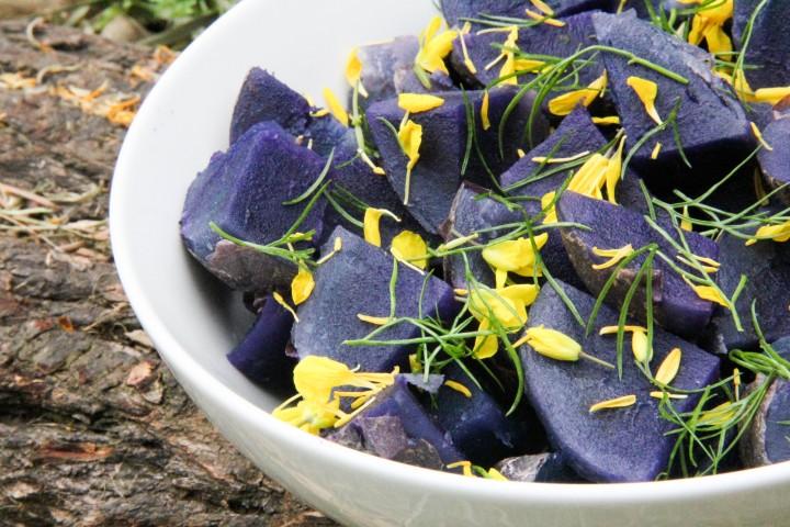 purple majesty krumpiri