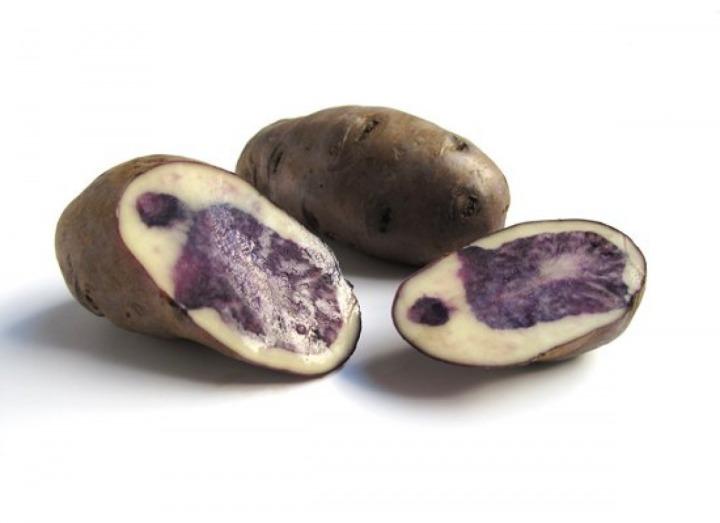 Purple Peruvian (FOTO: Joseph Erdos / The Huffington Post)