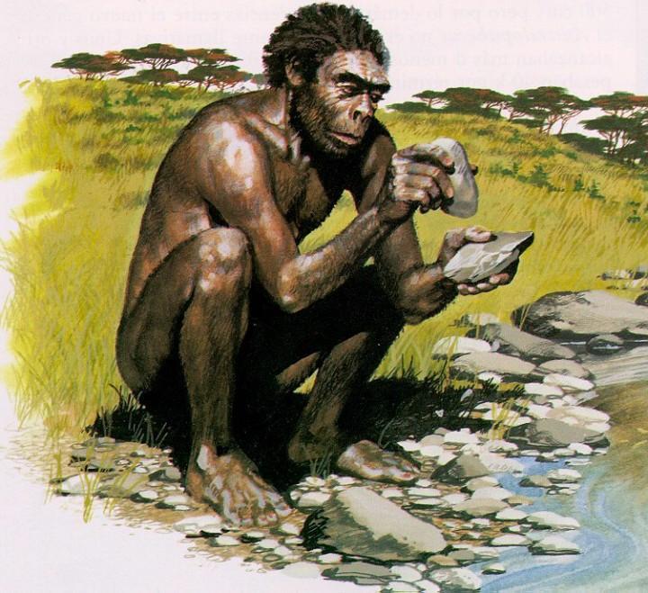 Homo habilis (FOTO: cmchomohabilis.blogspot.hr)