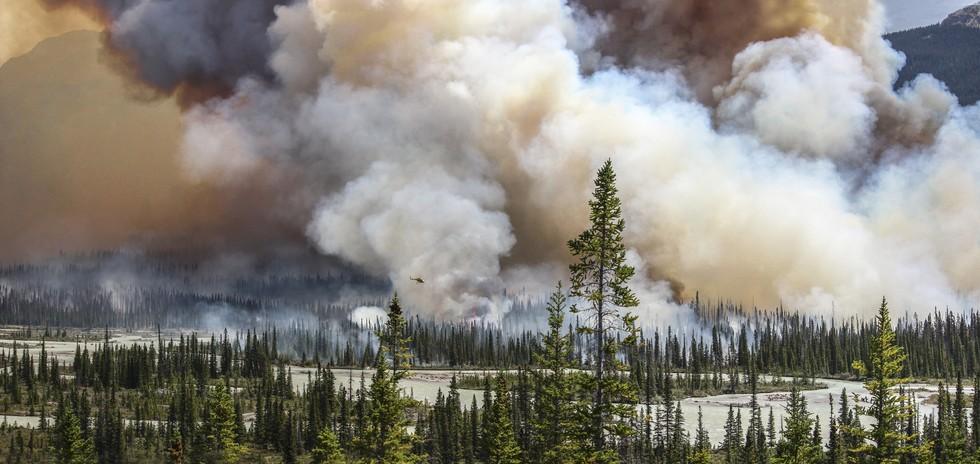 Početkom svibnja ove godine kanadsku pokrajinu Albertu pogodio je golemi požar, koji je progutao 590.000 hektara šume. Stavljen je pod kontrolu tek mjesec dana kasnije. Najveća je i najskuplja katastrofa u povijesti Kanade. (Credit: Sara Lindstrom)