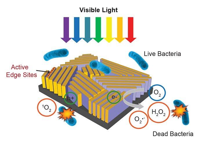 Shematski prikaz minijaturnog pročistača (C. Liu et al., Nature Nanotechnology)