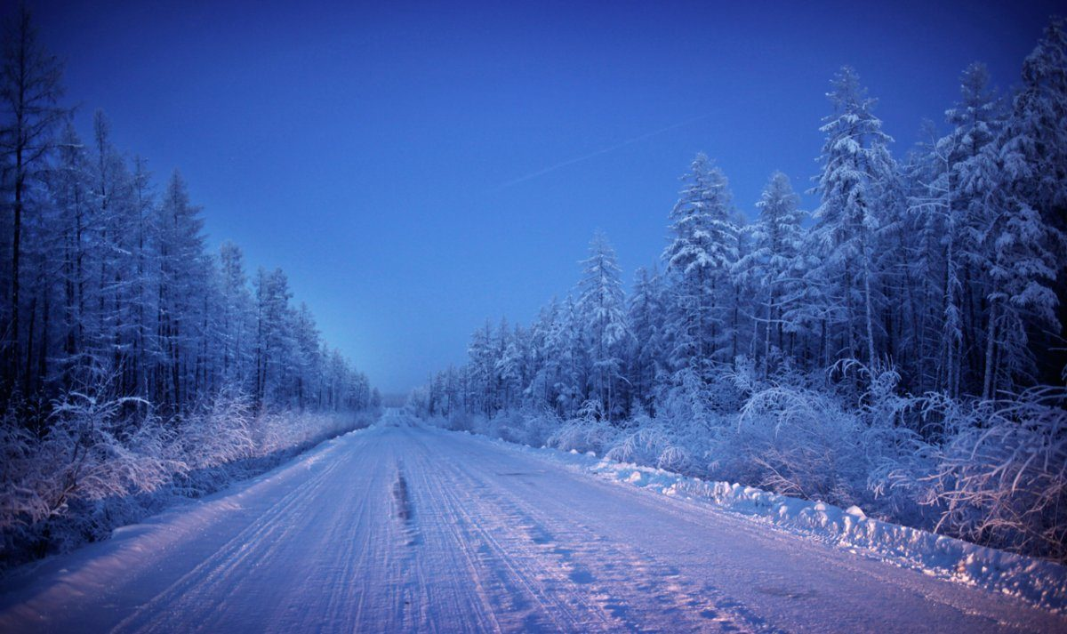cold8