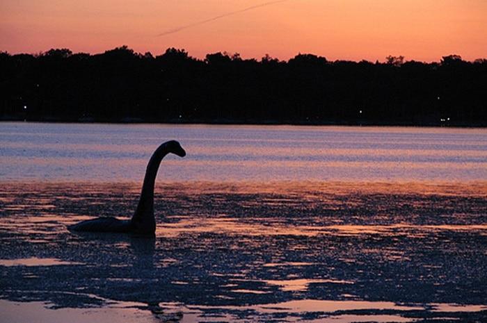 Voda iz Loch Nessa će se podvrgnuti DNA analizi