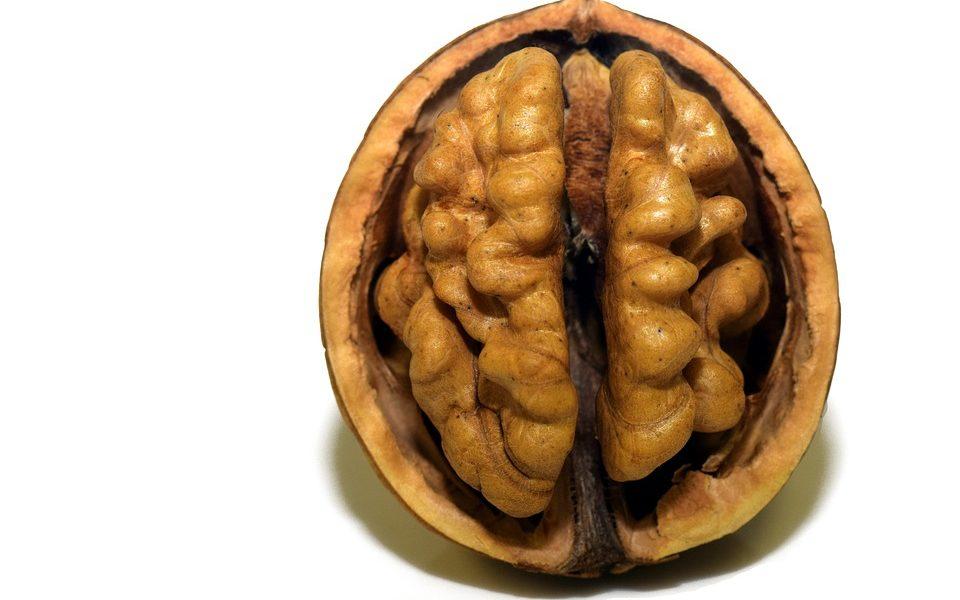 Ljudi koji sve odgađaju imaju drukčiji mozak