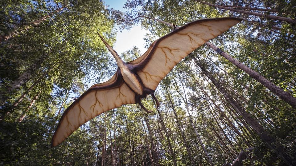 Otkrivena je nova vrsta letećih dinosaura