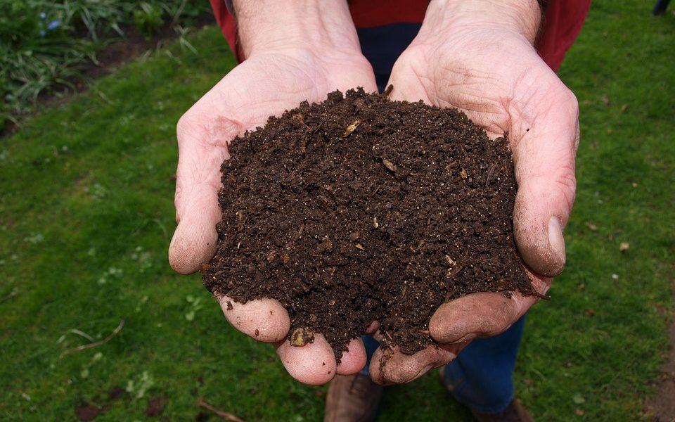 Što kažete na kompostiranje ljudi?