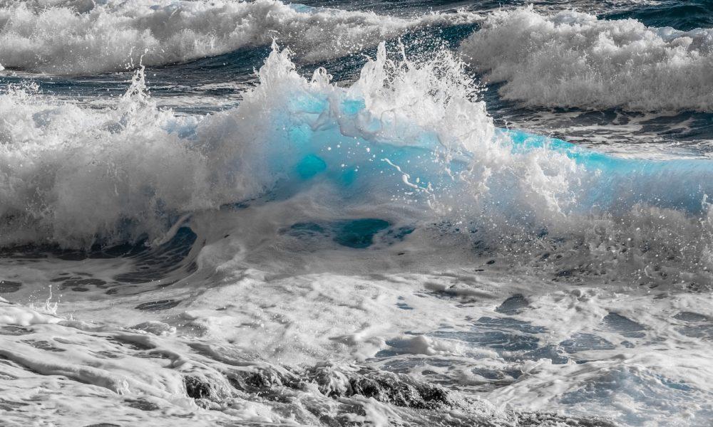 IRB: Otvorena jedinica za procjenu biološkoga potencijala supstanci iz mora i slatkih voda