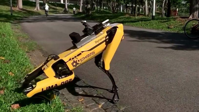 Robotski pas opominje ljude i čuva Singapur od korone