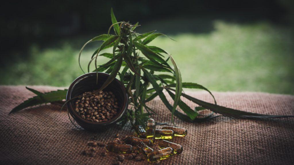 Uzgoj konoplje, CBD i medicinska marihuana u državama bivše Jugoslavije