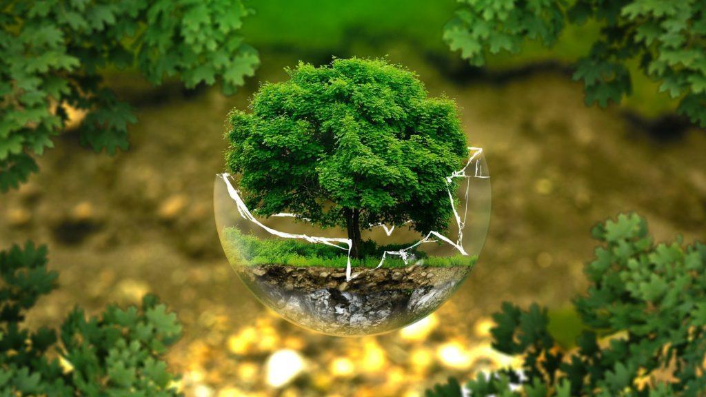 Što smo napravili Zemlji u manje od četrdeset godina?